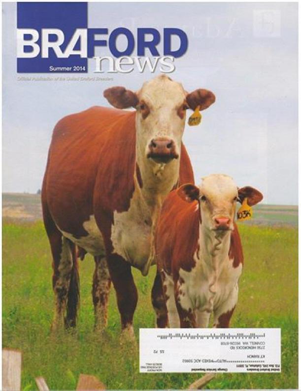 BrafordNewsMay2014