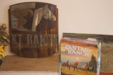 fantasy ranch cover kt