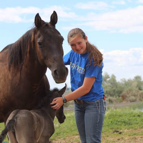 Blackie filly with Anna June 2019