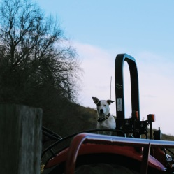 Andy on the tractor March 2020