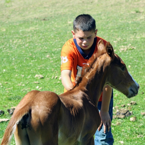 Kade with Lona colt June 2020-1