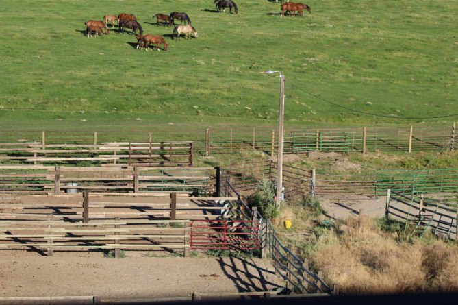 Corral- done- Aug 2020